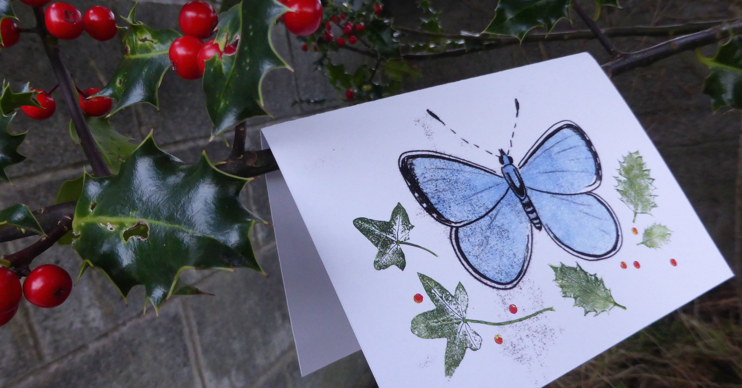 Holly Blue Christmas Cards (based on monoprints), 2016.Featuring  Celastrina argiolus  and its foodplants, with a festive message about their natural history and conservation. A percentage was donated to OWLS Children's Nature Charity and Discovery Gospel Choir.