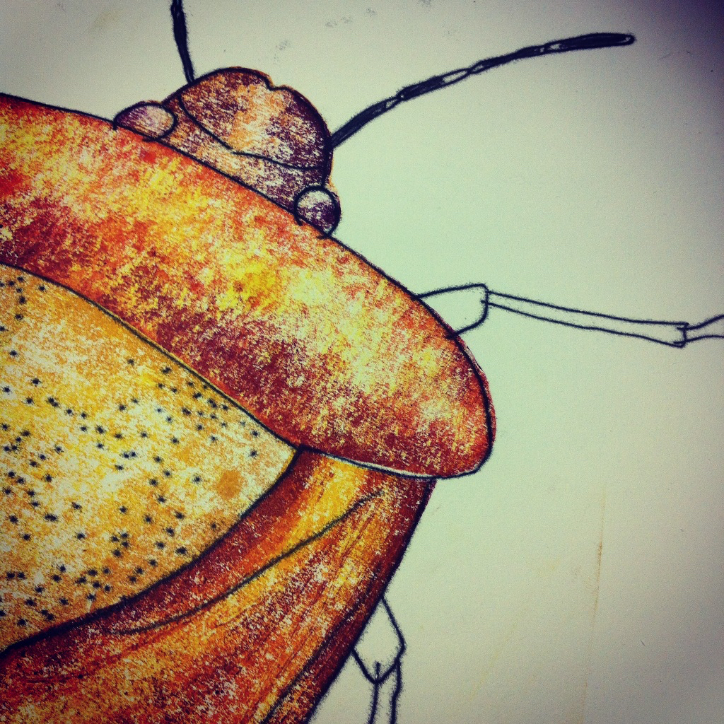 Detail from Hairy Shield Bug (monoprint), 2016.  Wayward Fruit Tree  , Ormond Studios