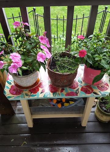 flowers&herbs.jpg