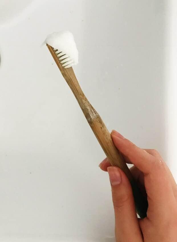 toothpaste on a brush.jpg