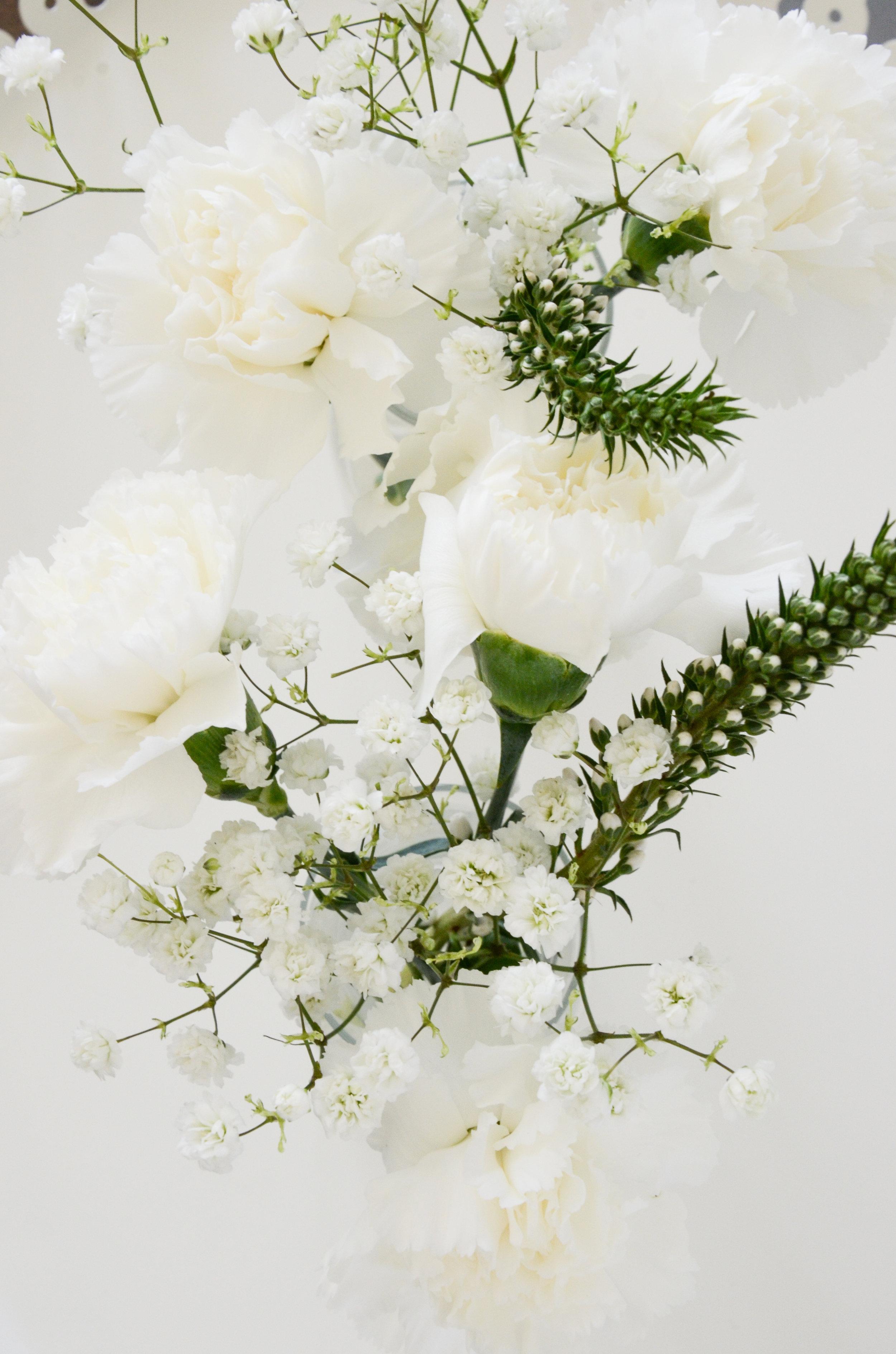flowers all white above.jpg