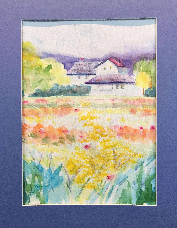 Skagit Daffodil Fields Yvonne Jones.JPG