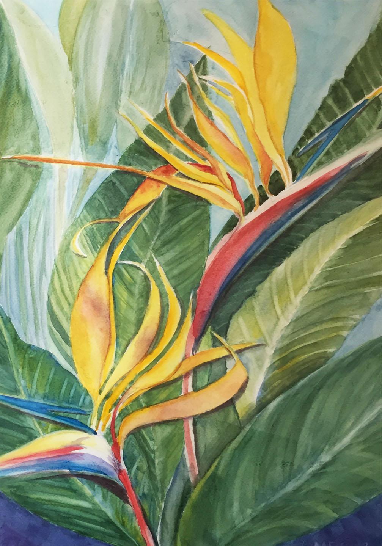 Pretty Birds   Marcia Roberts Cecil