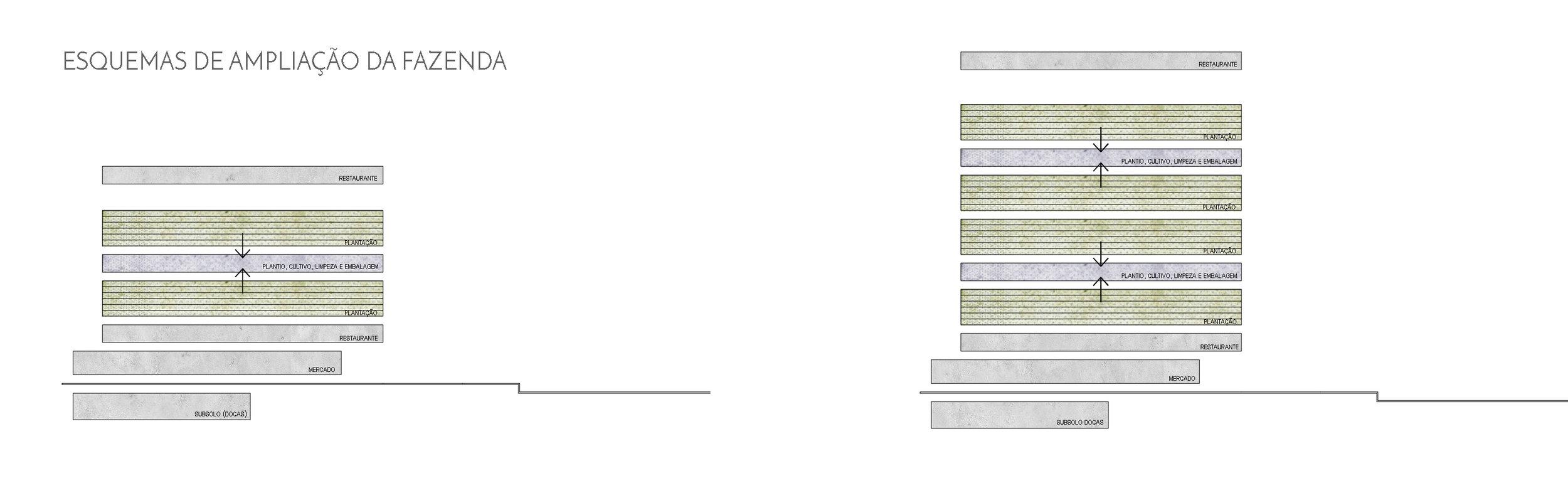 esquema plantio - verticalizar.jpg