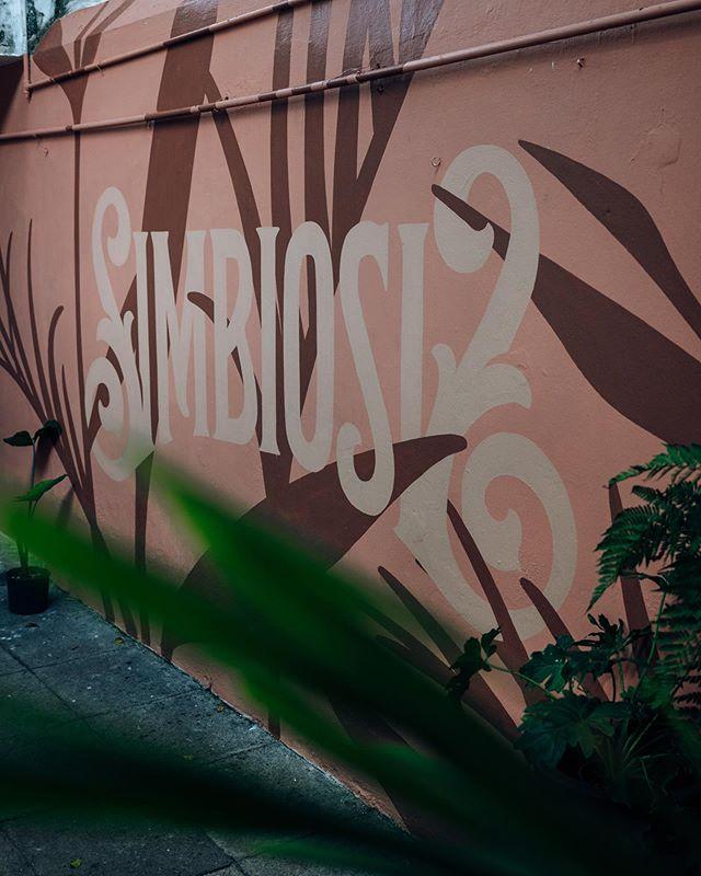 """He aquí la pieza que realicé para @albanamx. """"Simbiosis"""" surge de la idea reflejar la esencia de este espacio, que busca promover el trabajo de artesanos mexicanos y complementarlo con botánica nativa. Vayan a conocerlo y ver la obra ⚡️ . . . . . #mural #muraldesign #muralart #letteringmural #muralist #lettering #brandingdesign #identitydesign #calligraphy #handlettering #typography #signpainting #signpainter #signwriter #artist #designspiration #visualidentity #designfeed #logoinspirations #dribbble #worldbranddesign #letteringco #ligaturecollective #typematters #tyxca #strenghtinletters #diseñomexicano #mexicandesign"""