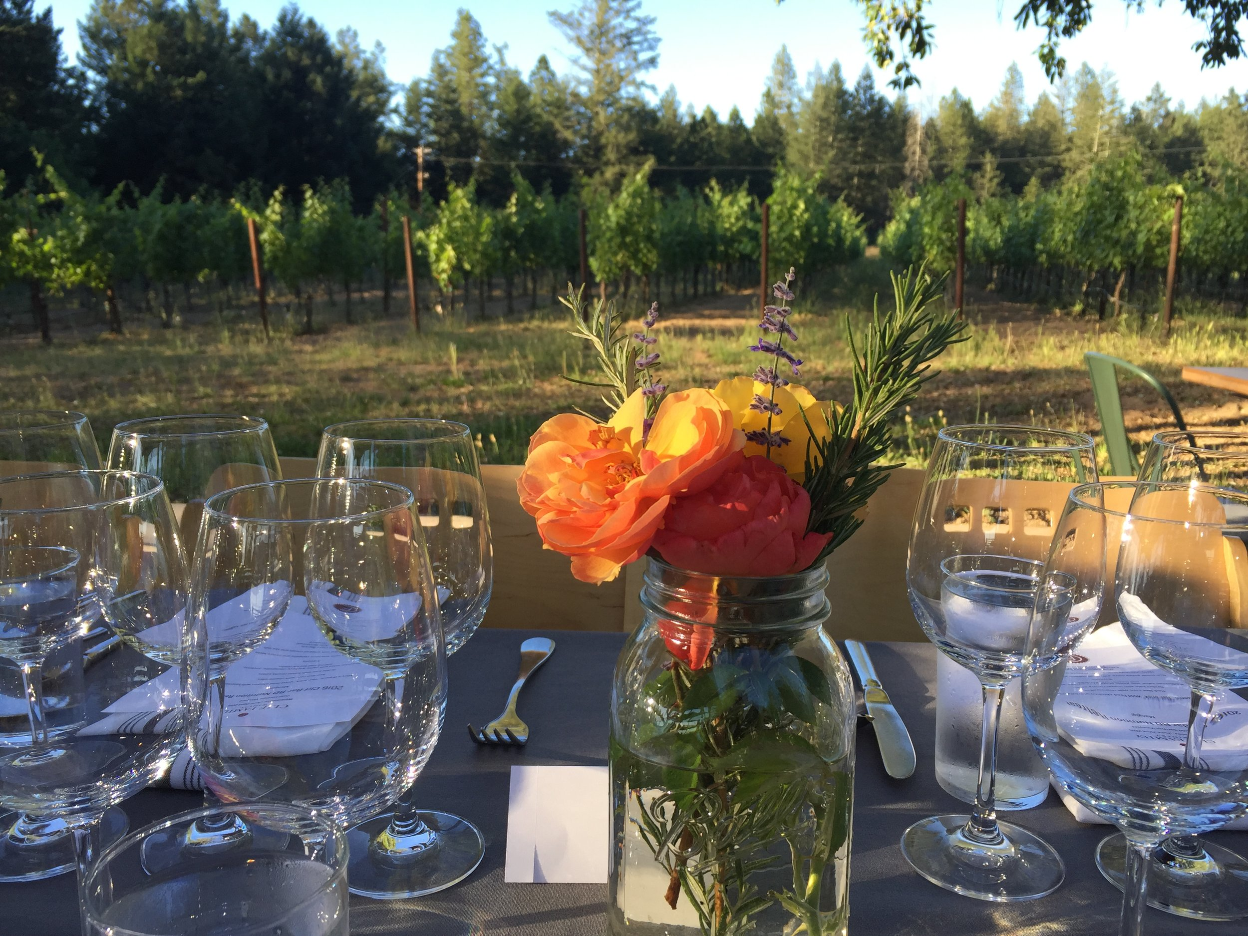 that's a wrap! Organic dinner (and wine) at Clif's Vineyard
