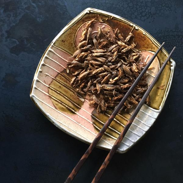 Aketta whole roasted crickets