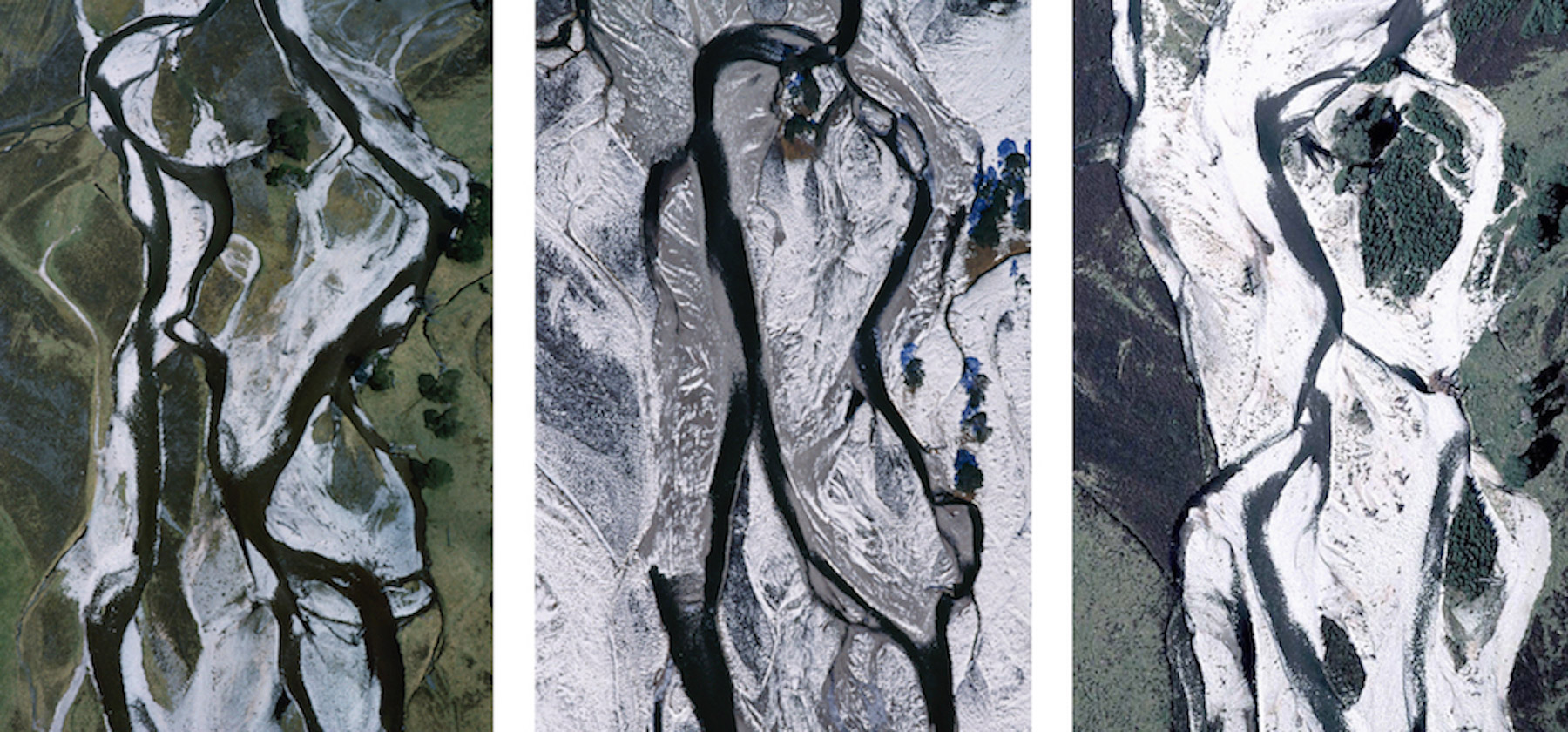 Braided river & pines, Glen Feshie, Cairngorms, Scotland (time-lapse triptych), 1988-2016 // © Patricia Macdonald & Angus Macdonald