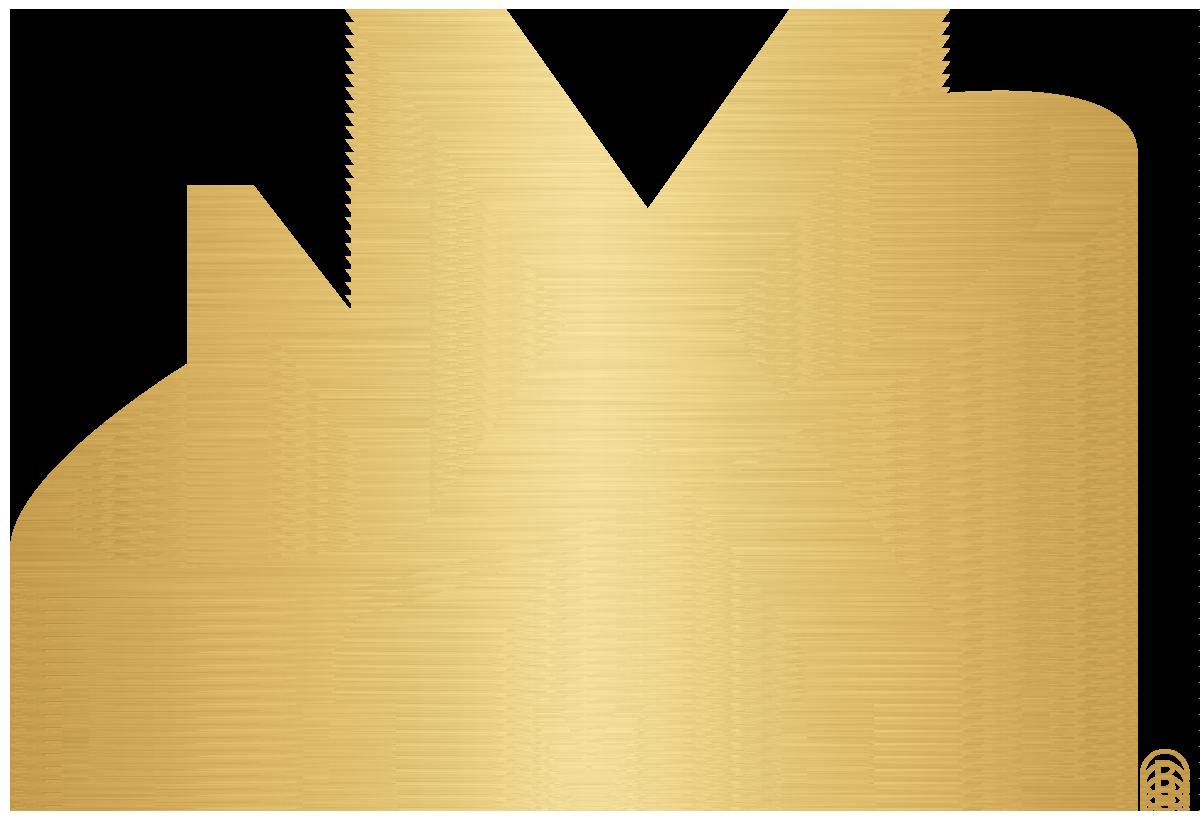 NxLeveL_Logo_BrushedGold.png