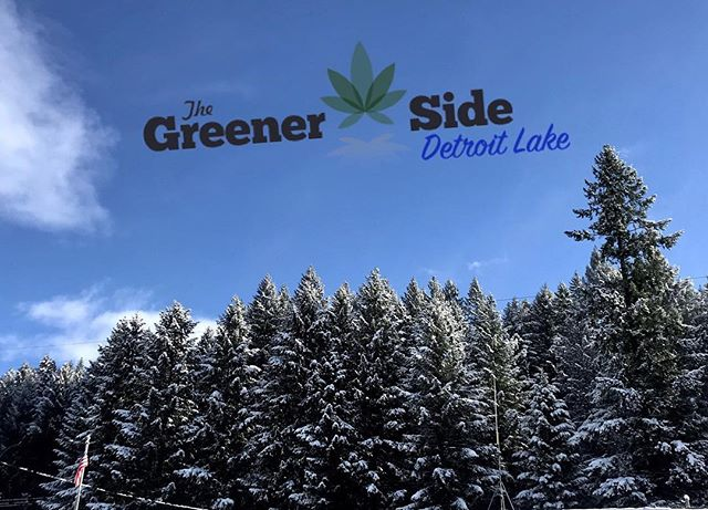 Don't start your weekend yet! @skihoodoo just released that their Autobahn Tubing Park is reopen today 10am - 4pm! Remember to bring in your season passes to Hoodoo or @mtbachelor and receive 5% off of your purchase at either of The Greener Side locations. ❄️☃️🌲 • • #tubing #snow #dispensary #recreational #announcement #oregon #cannabiscommunity #thegreenerside #secretstash #keepitonthedl #today #weekend #adventure #besafe #havefun #keepeugenegreen #detroit #medical #recreate #mountains #travel #smokeweed #420 #saturday #cannabis #flowers #gethigh #medicate #locations #weedstagram • • *Nothing is for sale on instagram. Do not drive or operate machinery under the influence of cannabis. For Adults 21+ and OMMP only.*