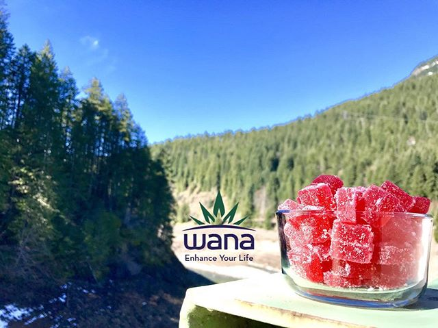 Did you know that @wanabrands are available in 4 different states?! Yup that's right, you can get these tasty treats in multiple recreational states while you're at home or on vacation! Available at either of our locations here in Oregon. 😋🌲🤤 • • #delicious #edibles #dispensary #recreational #gummies #oregon #cannabiscommunity #relief #consistency #thegreenerside #sativa #indica #1:1 #glutenfree #keepeugenegreen #detroit #medical #recreate #natural #travel #sunny #420 #DL #instagood #cannabis #enhance #gethigh #medicate #wheredoyouwana #flavors • • *Nothing is for sale on instagram. Do not drive or operate machinery under the influence of cannabis. For Adults 21+ and OMMP only.*