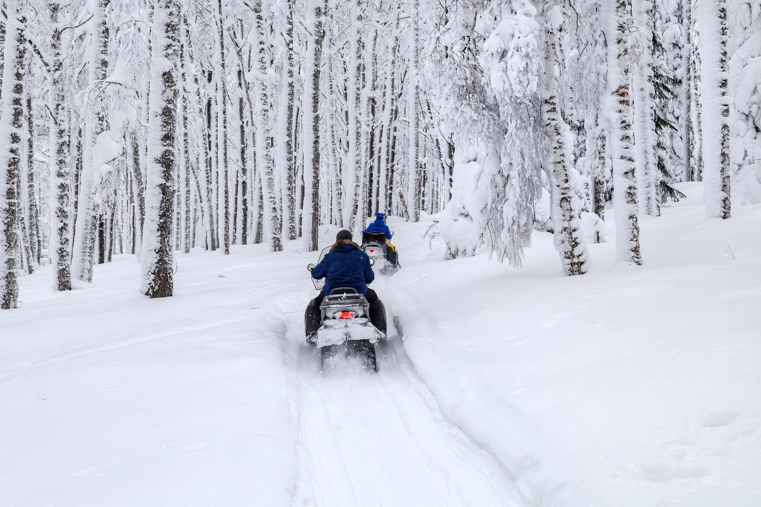 Snowmobiling Lake tahoe