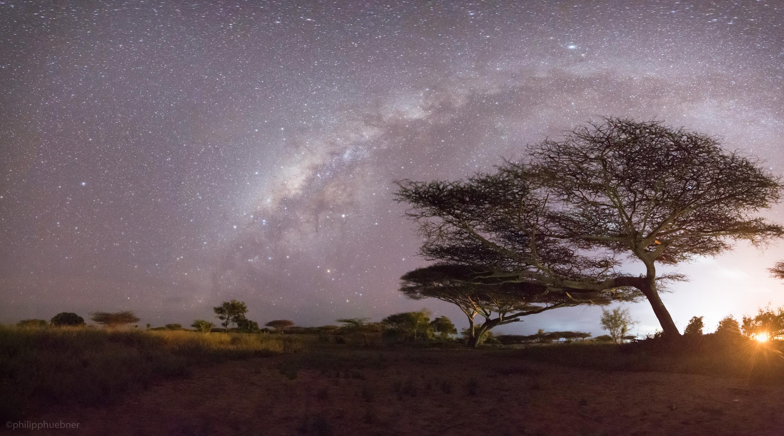 milky way arching over acacia trees - manda island