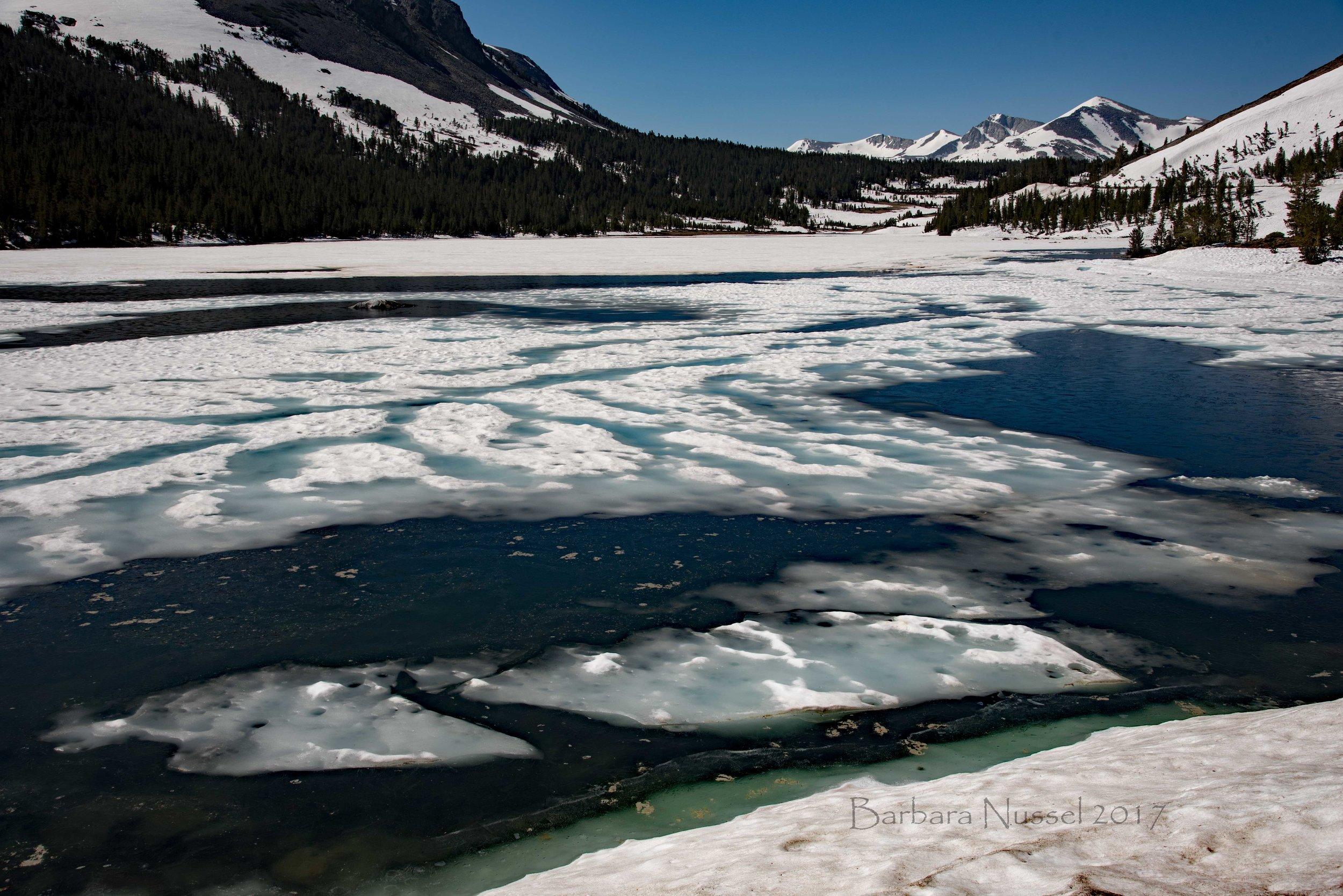 Ellery Lake (2017-06-24)