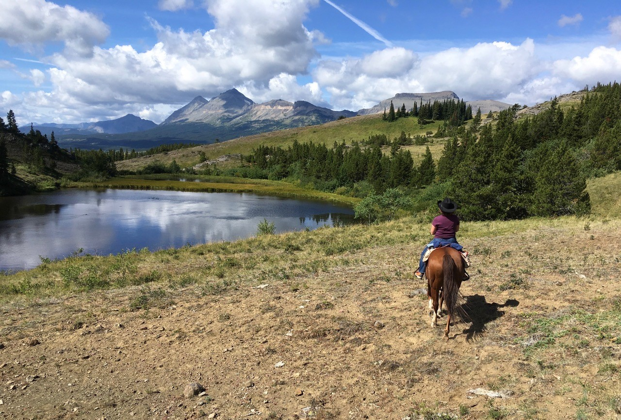 Spirit of the Wild Adventure Vacation. Two days and two nights at Bear Creek Guest Ranch with a day of riding the famous Badger Two Medicine Country with Bill Beck and a day fishing the waters of the Blackfeet Reservation with Tyson Running Wolf. The auction item is for two to four people in late fall 2019 or Spring 2020. -