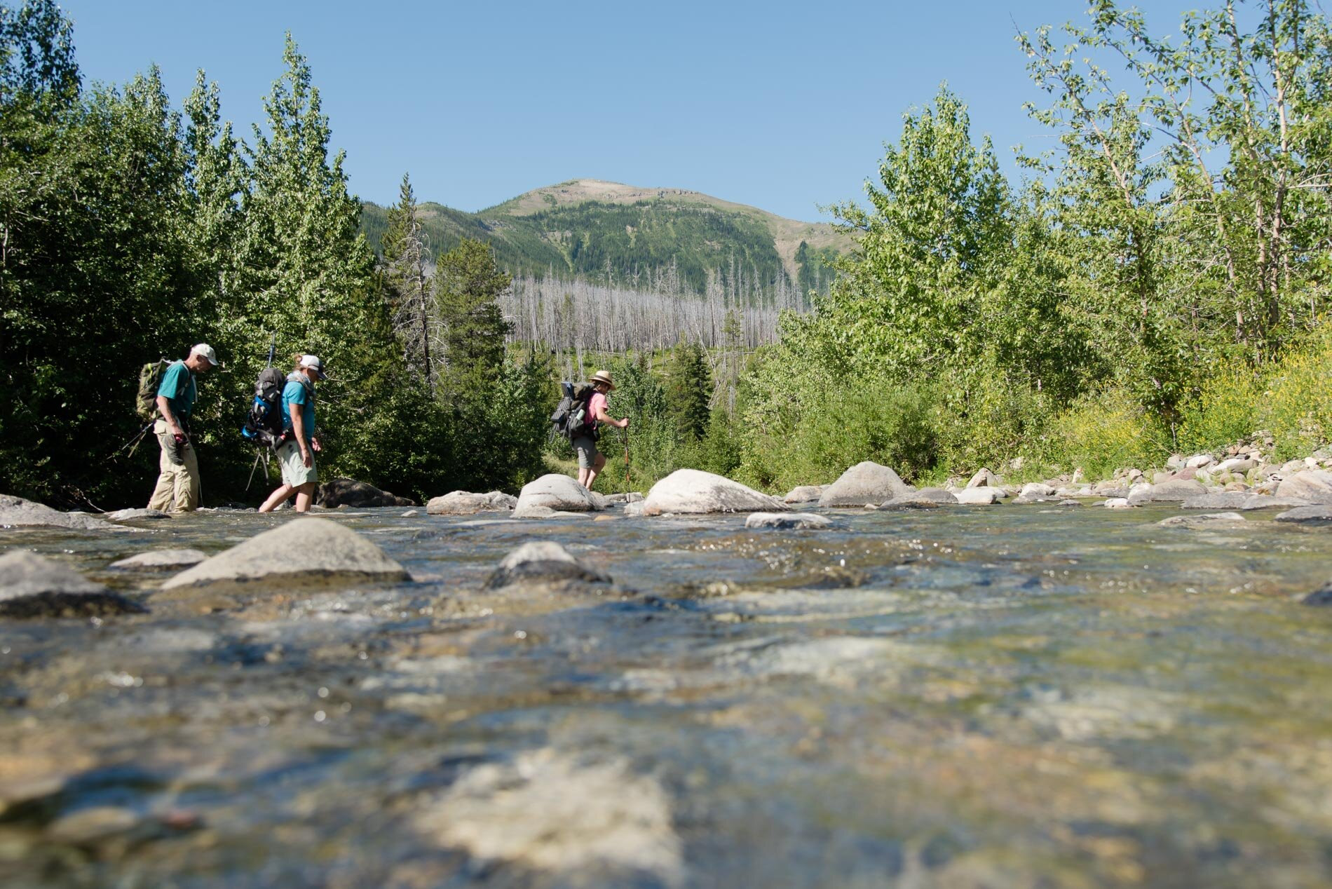 Hikers cross the South Fork of the Two Medicine river. Help protect this remarkable landscape with a gift today!