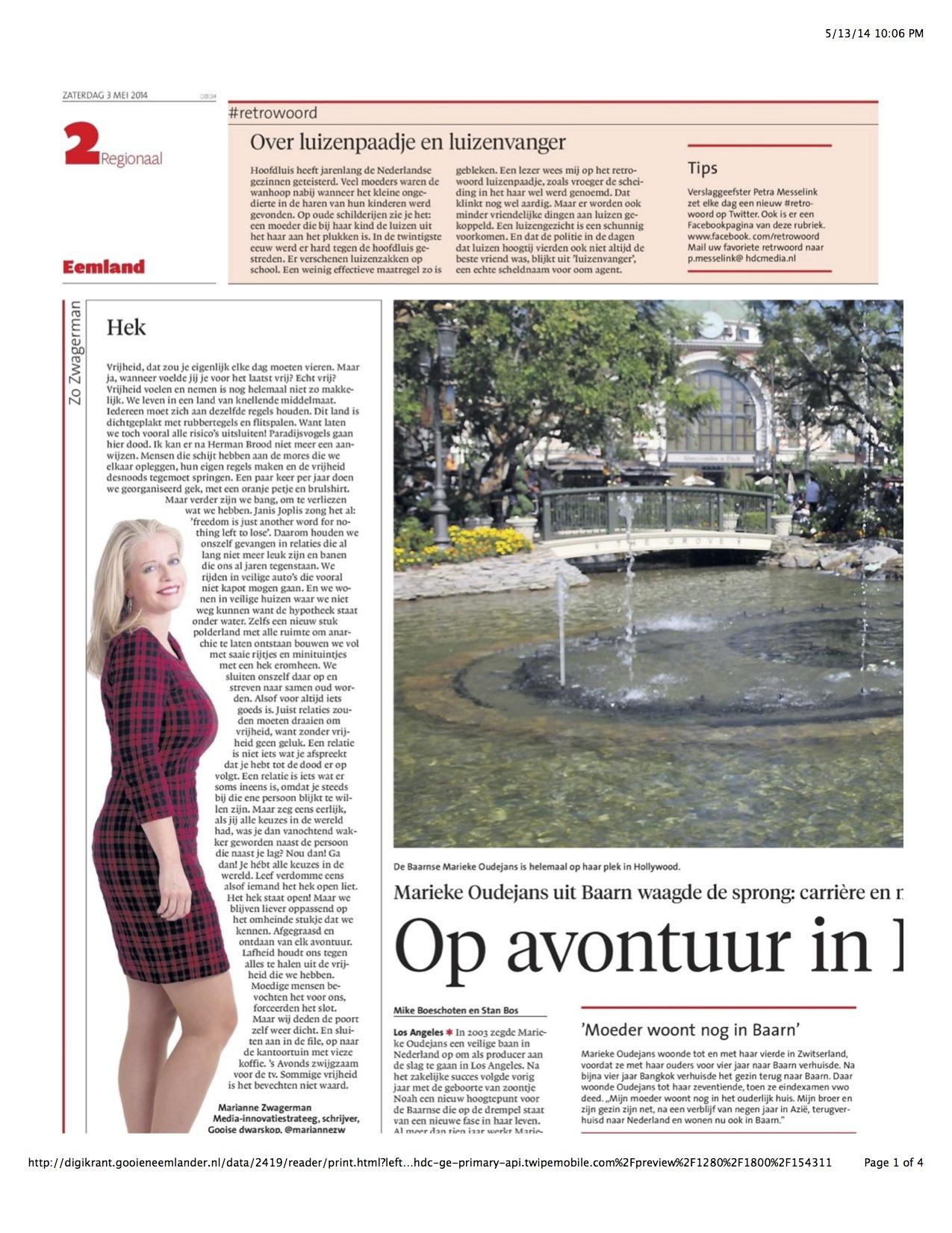 De Gooi en Eemlander Newspaper