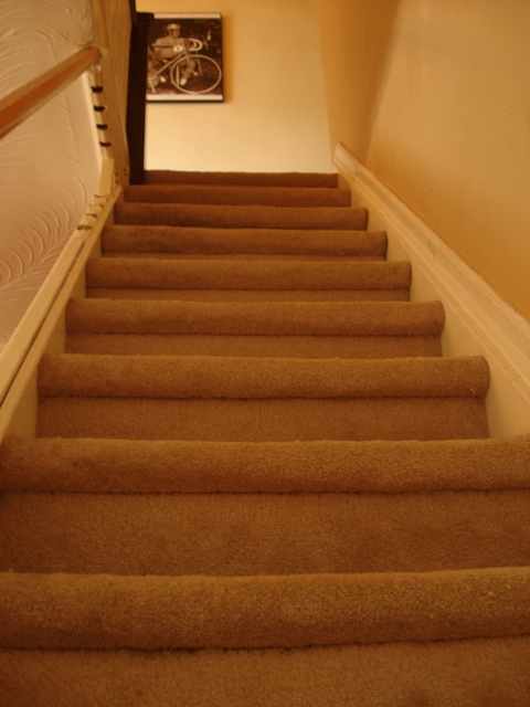 lesley-metcalfe-staircase-renovation-before-pic-stairs-with-carpet.jpeg