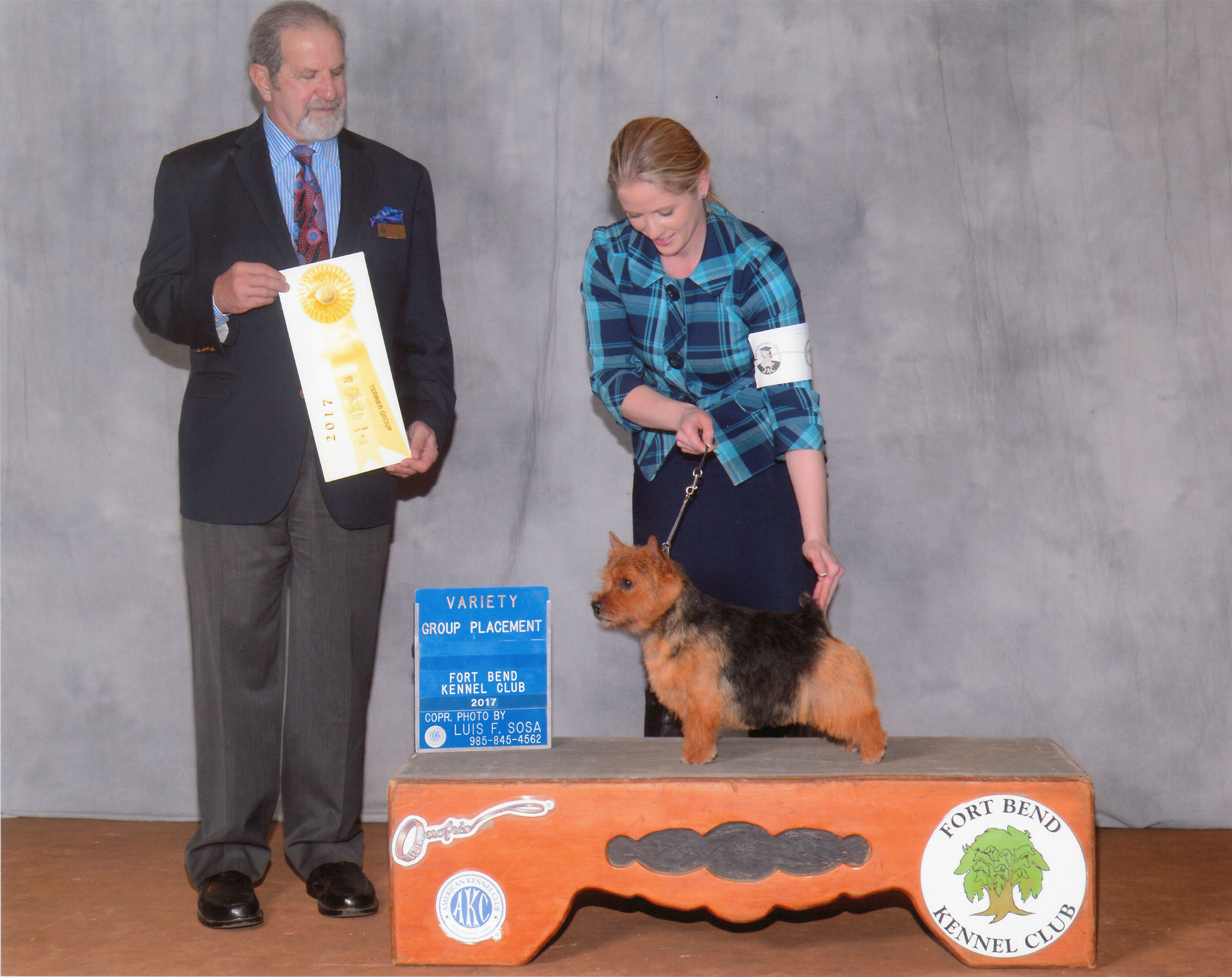 Skip receiving a Terrier Group 3 Award at Fort Bend KC under judge Norm Kenney, January 2017. Handled by Ashlie Whitmore.