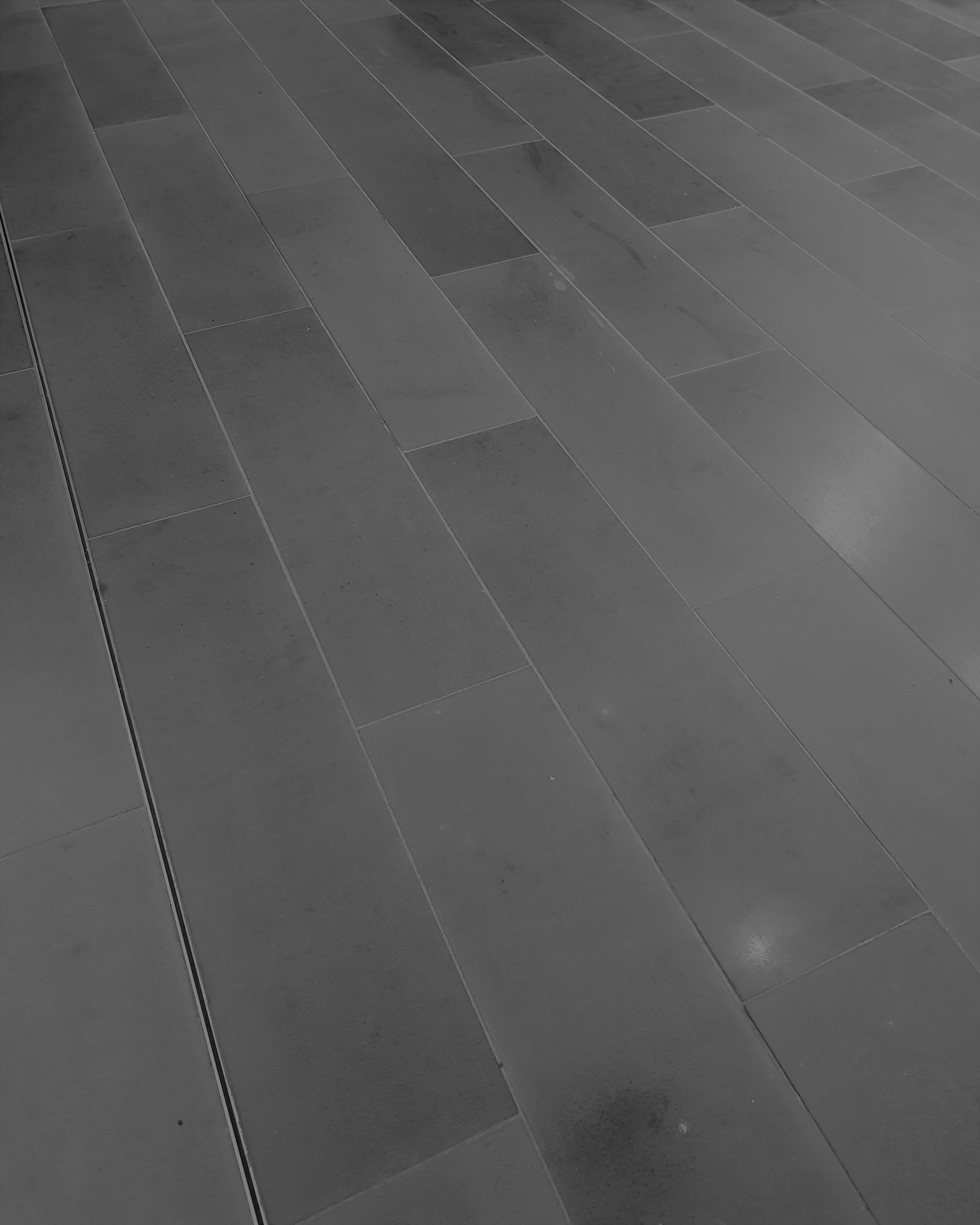 Bluestone Honed Tile 900x300.