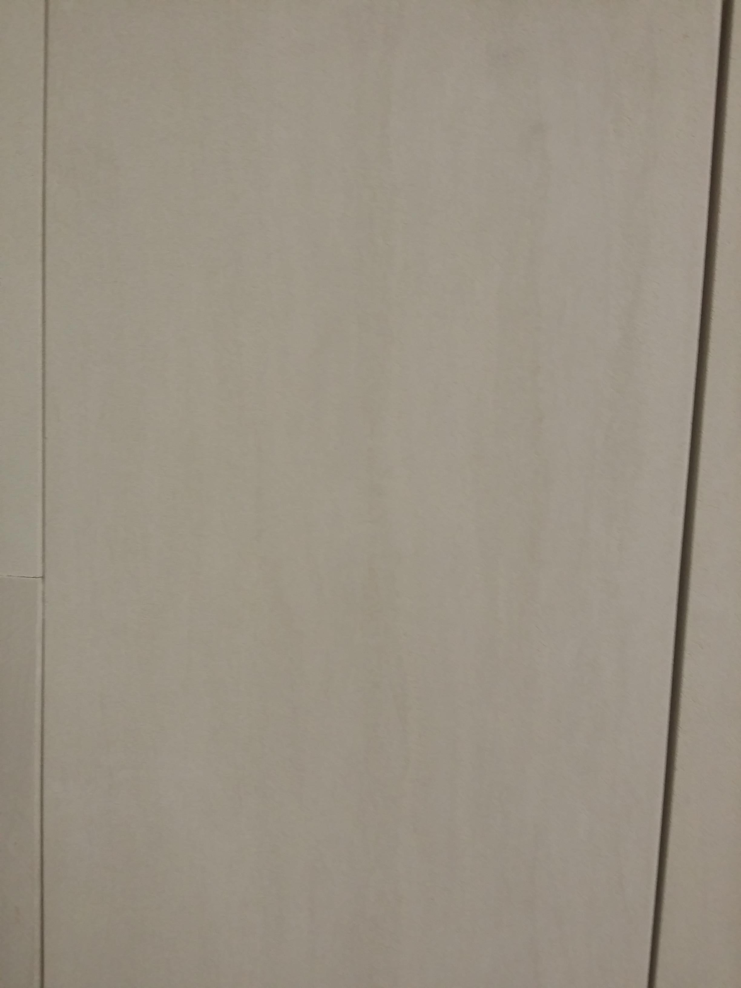 Siltstone Honed Tile
