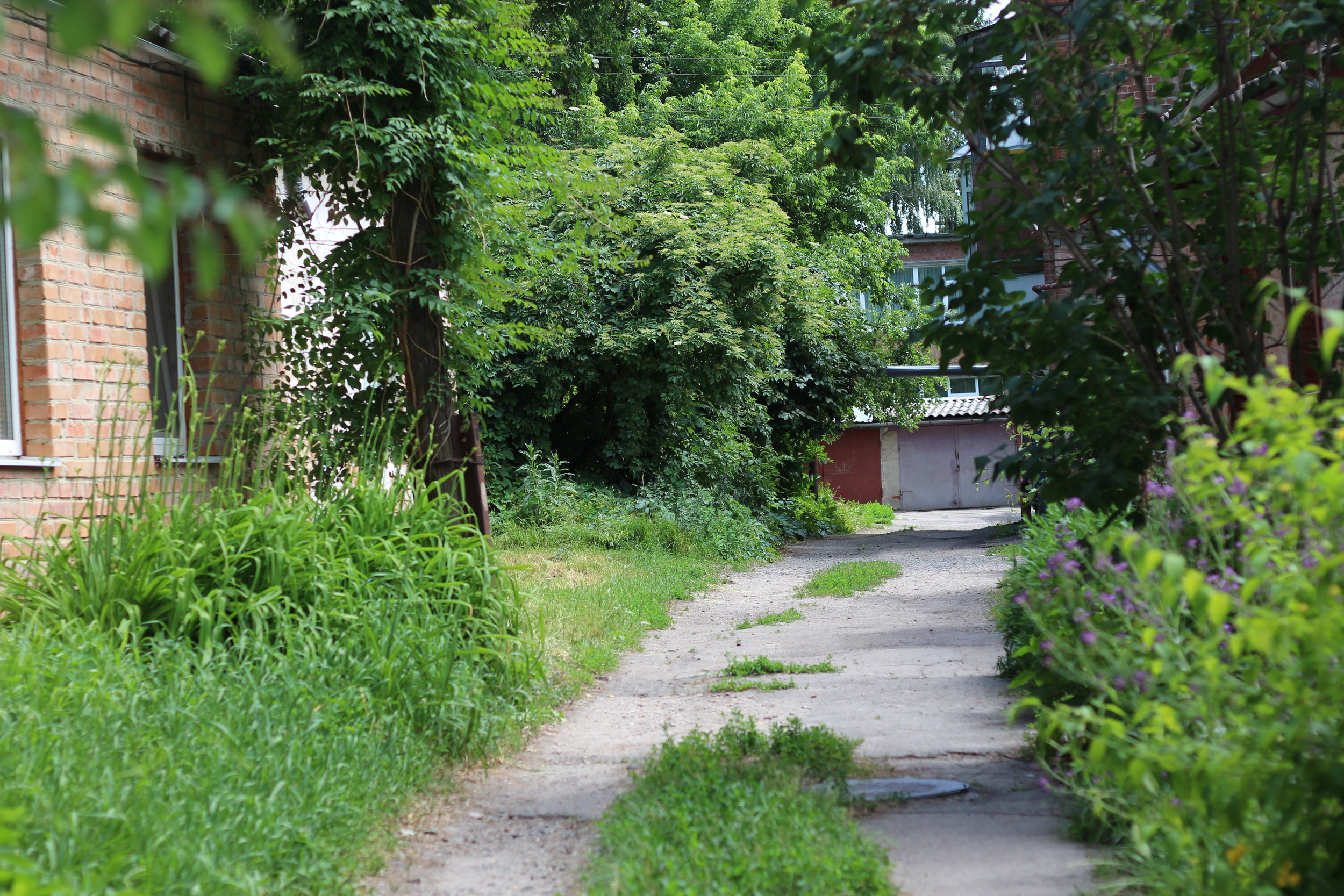 I loved exploring the lush streets around my apartment, which was near  Birch Square . This area reminded me a bit of Winnipeg's Wolseley neighbourhood.