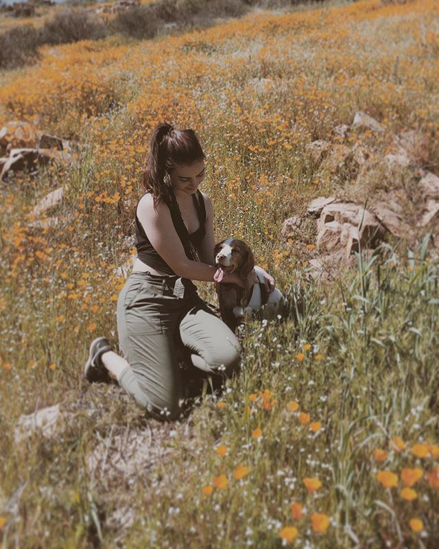 weekend hikes with my favorite girl #superbloom