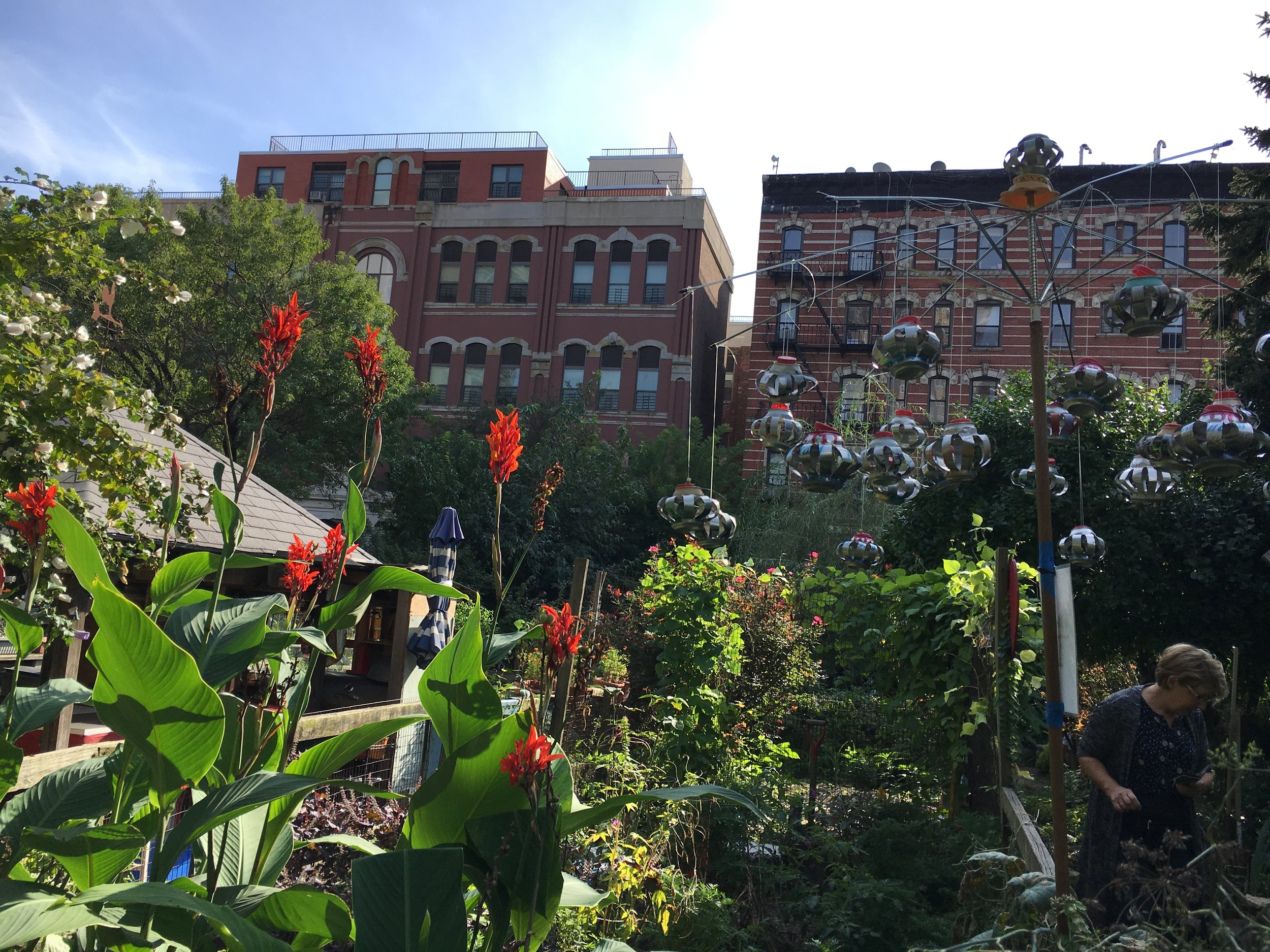 CommunityGardensNYC_2018-10-04.JPG