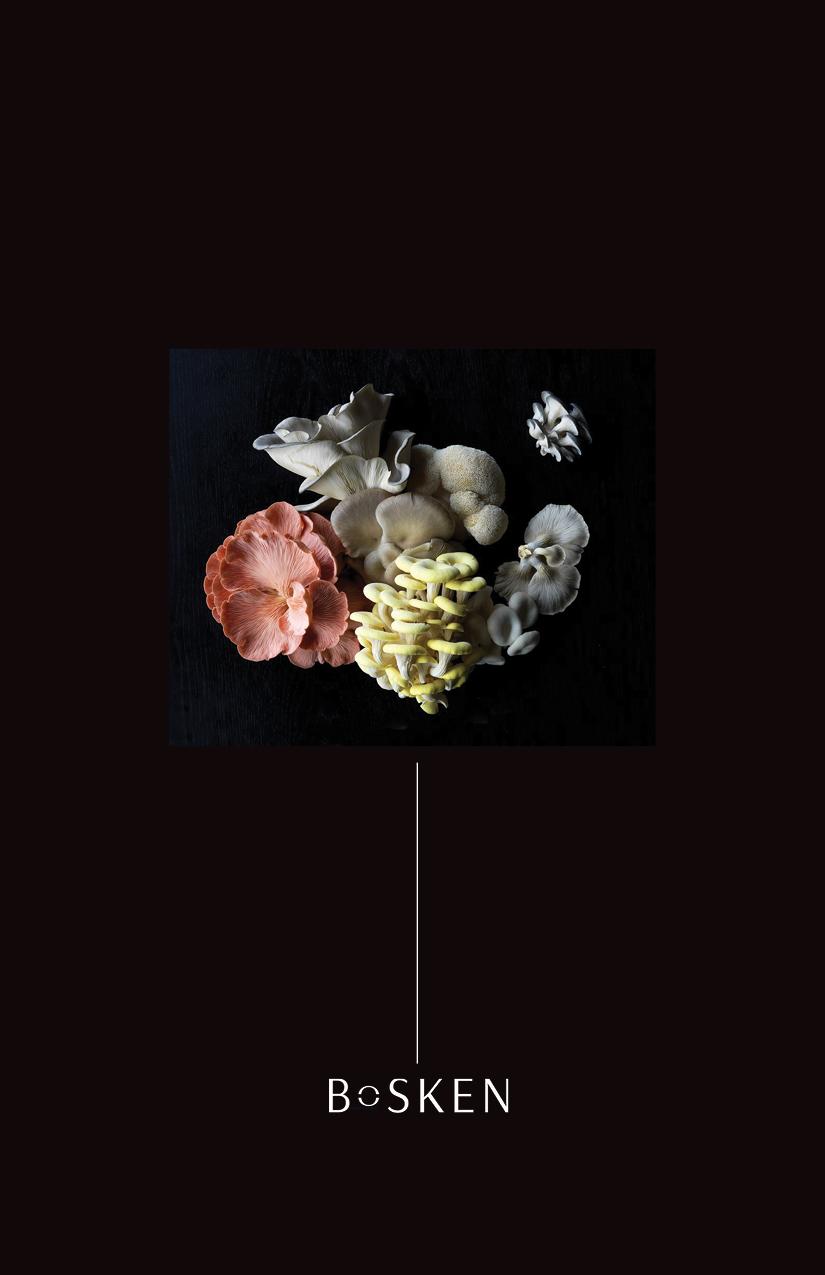 Bosken_Brochure.jpg