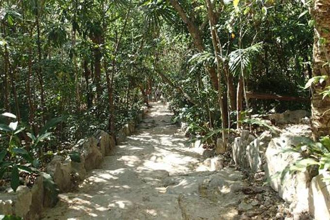Hammocks_and_Ruins_Blog_Riviera_Maya_Mexico_Travel_Discover_Cenotes_Azul_8.jpg