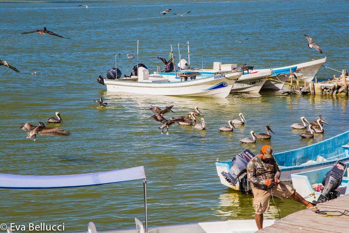 Hammocks_and_Ruins_Blog_Riviera_Maya_Mexico_Travel_Discover_Ruins_Muyil_Sian_Kaan_Float_28(LONG).jpg