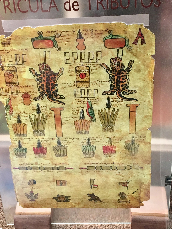 Aztex Codex Mendoza, the list of tributes by the vassals