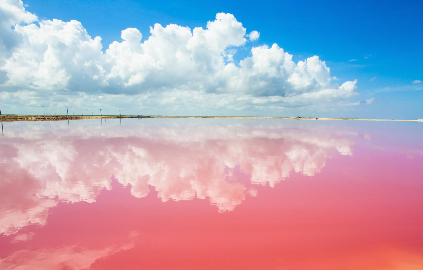 Las Coloradas, the Pink Lagoon.