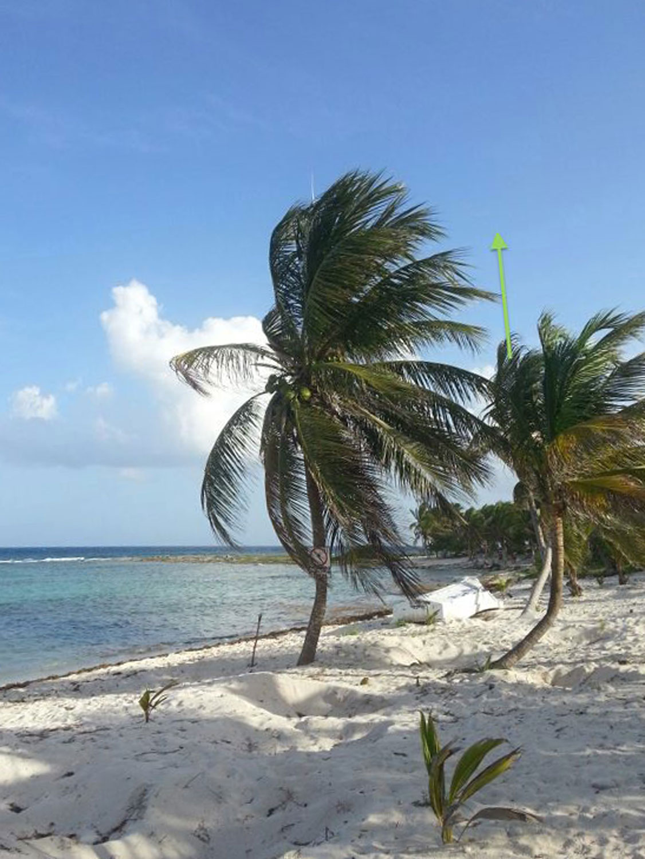 Hammocks_and_Ruins_Riviera_Maya_Mexico_Explore_What_to_Do_Yucatan_Playa_del_Carmen_Beahces_Paamul_20.jpg