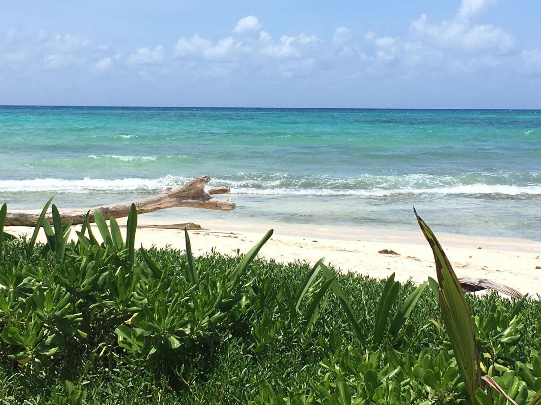 Hammocks_and_Ruins_Riviera_Maya_Mexico_Explore_What_to_Do_Yucatan_Playa_del_Carmen_Best_Beaches_16.jpg