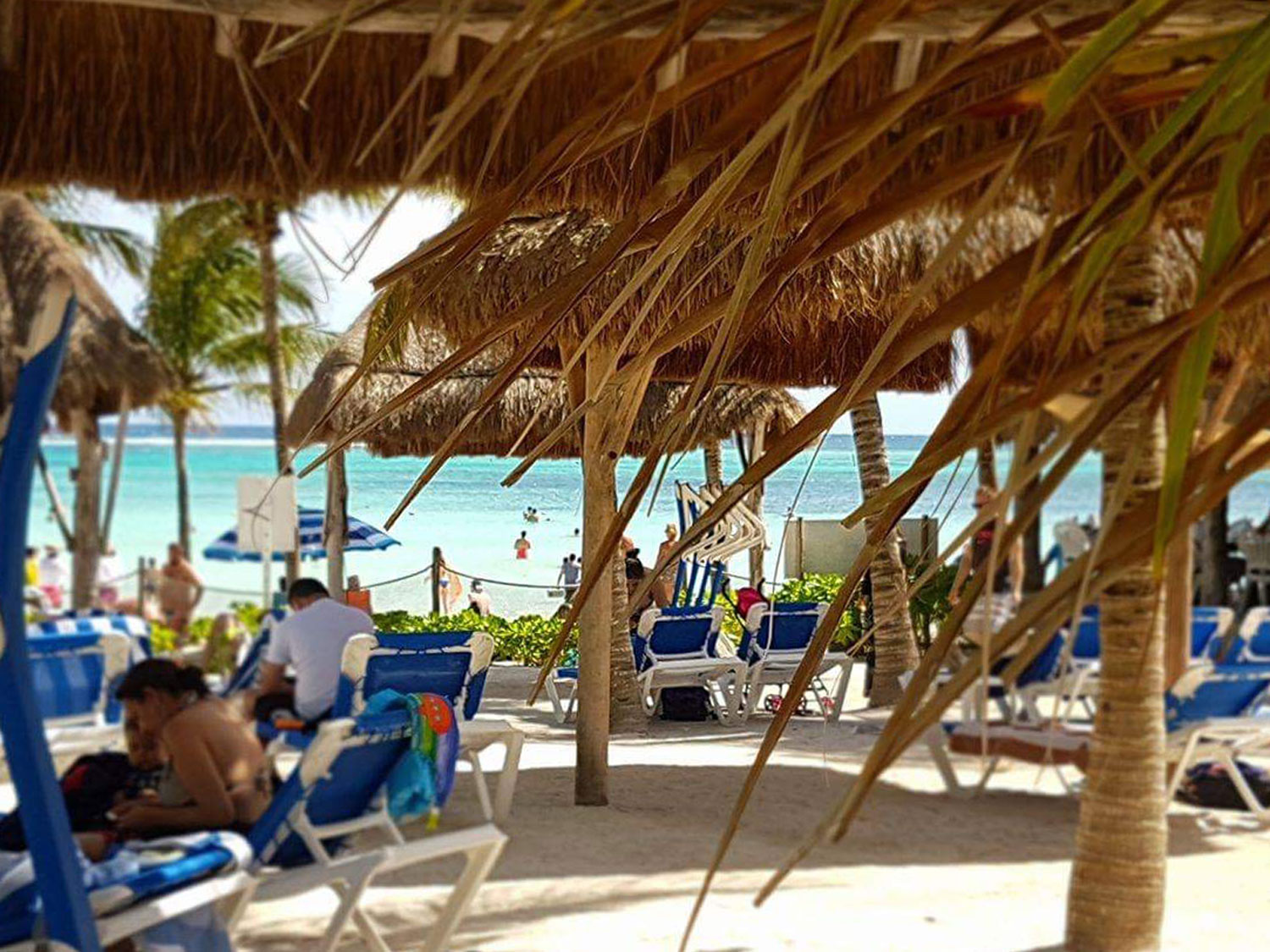 Hammocks_and_Ruins_Blog_Riviera_Maya_Mexico_Travel_Discover_Explore_Playa_del_Carmen_Beaches_Akumal_19.jpg
