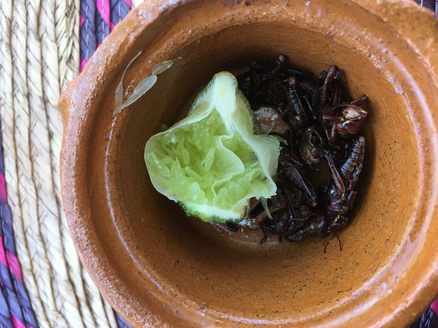 At La Perla with my Mexican friend Claudia. Our starter: crickets.