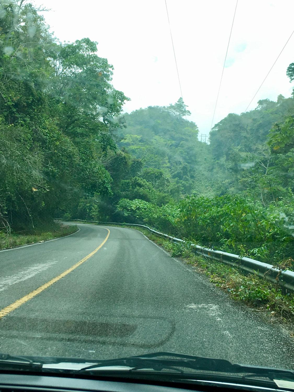 Hammocks_and_Ruins_Blog_Riviera_Maya_Mexico_Travel_Discover_Explore_What_to_do_Jungles_Lacandon_29.jpg