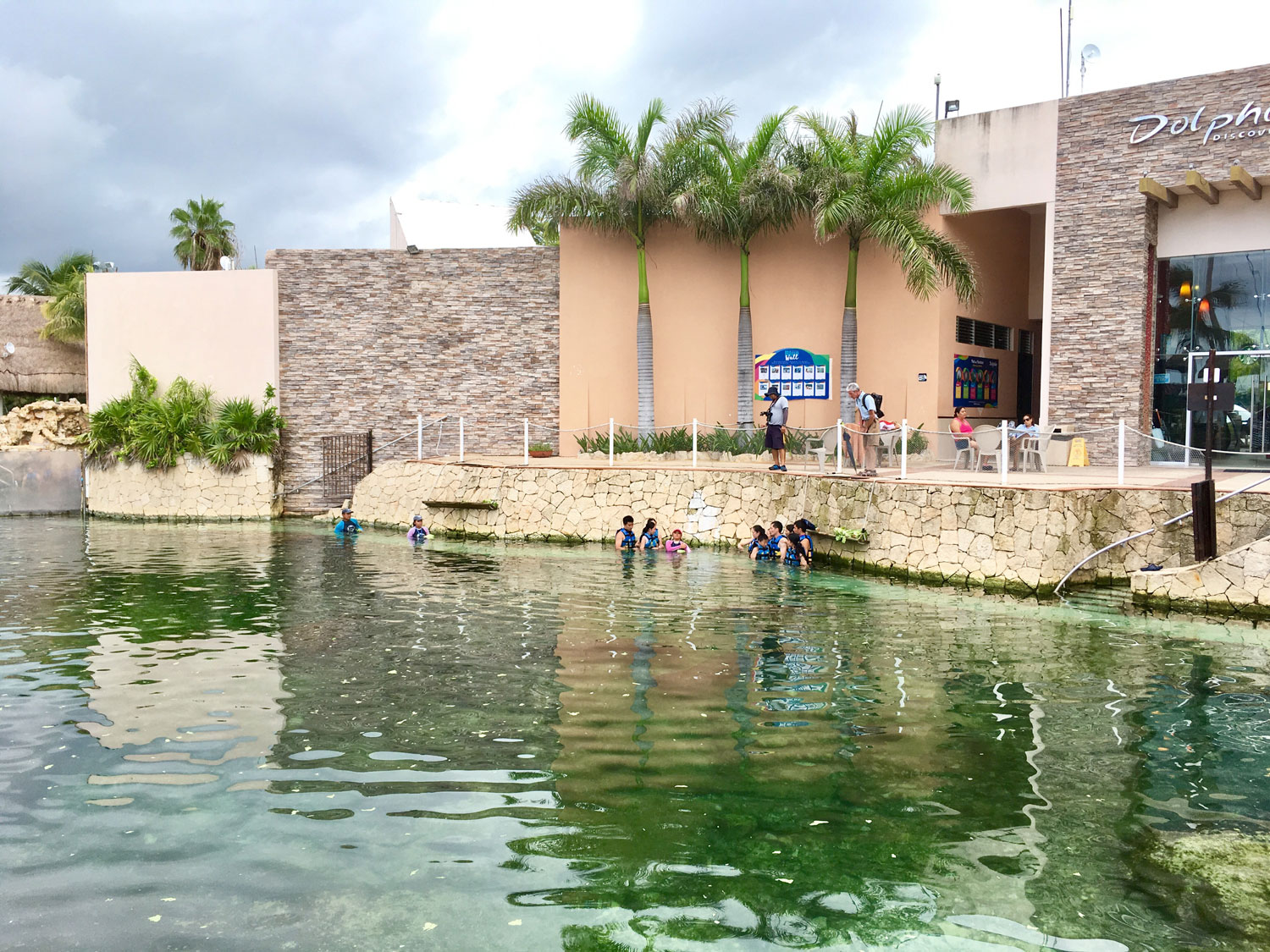 Swimming with manatees by the maritime museum.