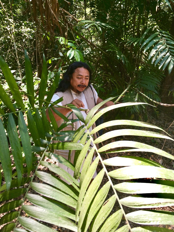 Hammocks_and_Ruins_Blog_Riviera_Maya_Mexico_Travel_Discover_Explore_What_to_do_Jungles_Lacandon_27.jpg