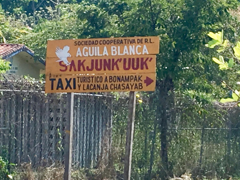 Hammocks_and_Ruins_Blog_Riviera_Maya_Mexico_Travel_Discover_Explore_What_to_do_Jungles_Lacandon_21.jpg