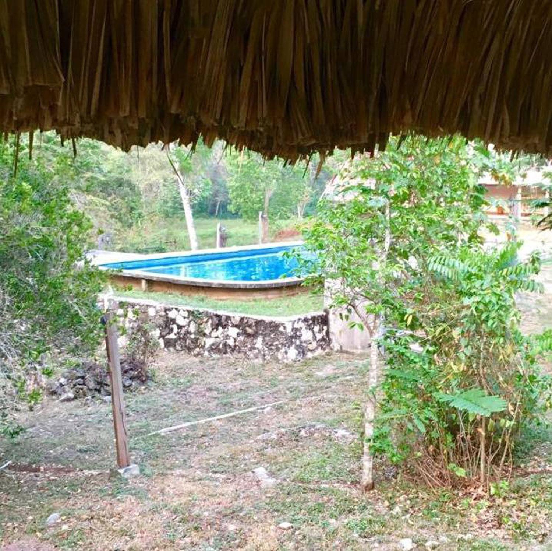 Escudo Jaguar pool.