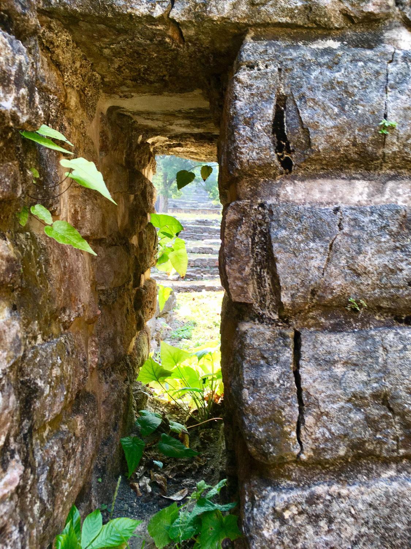 Hammocks_and_Ruins_Blog_Riviera_Maya_Mexico_Travel_Discover_Chiapas_What_to_do_Ruins_Yaxchilan_27.jpg