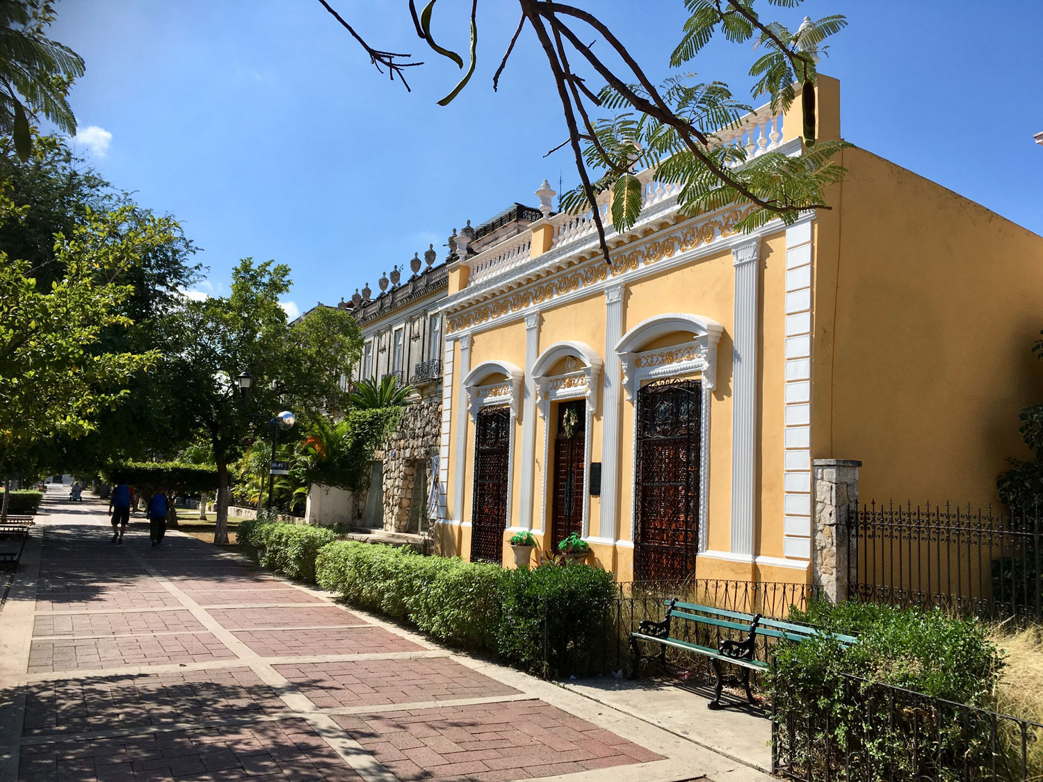 Colonial houses on the avenue Paseo de Montejo.