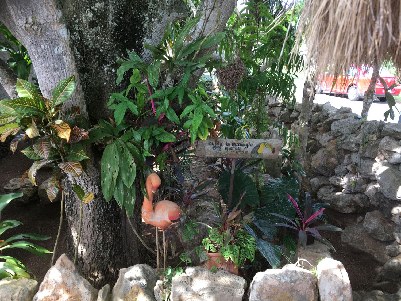 Hammocks_and_Ruins_Blog_Riviera_Maya_Mexico_Travel_Discover_Yucatan_What_to_do_Merida_Izamal_Town_62.jpg
