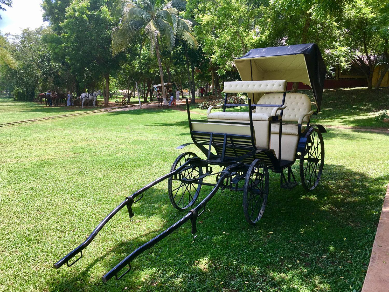 Hammocks_and_Ruins_Blog_Riviera_Maya_Mexico_Travel_Discover_Yucatan_What_to_do_Hacienda_Sotuta_de_Peon_30.jpg