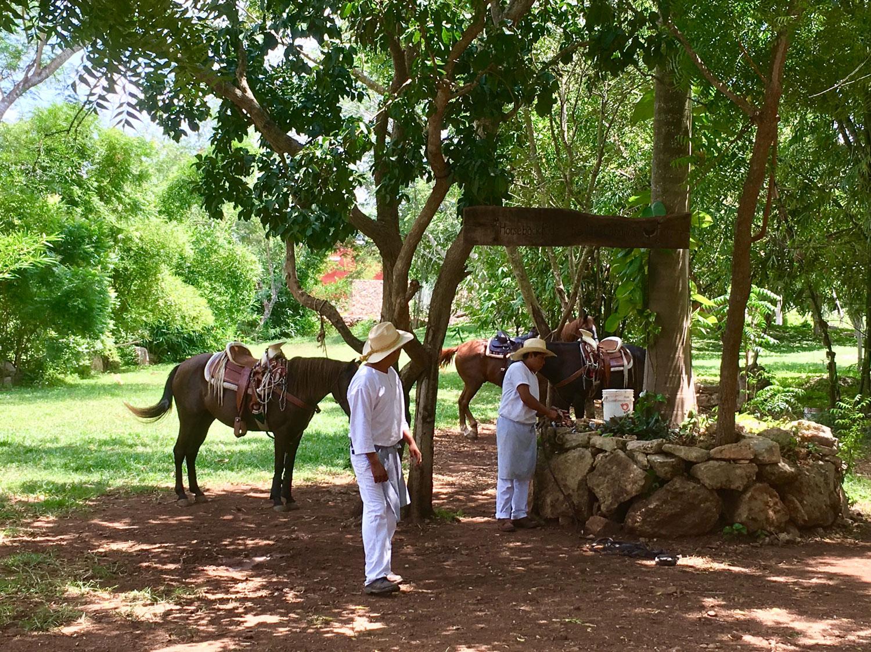 Hammocks_and_Ruins_Blog_Riviera_Maya_Mexico_Travel_Discover_Yucatan_What_to_do_Hacienda_Sotuta_de_Peon_22.jpg