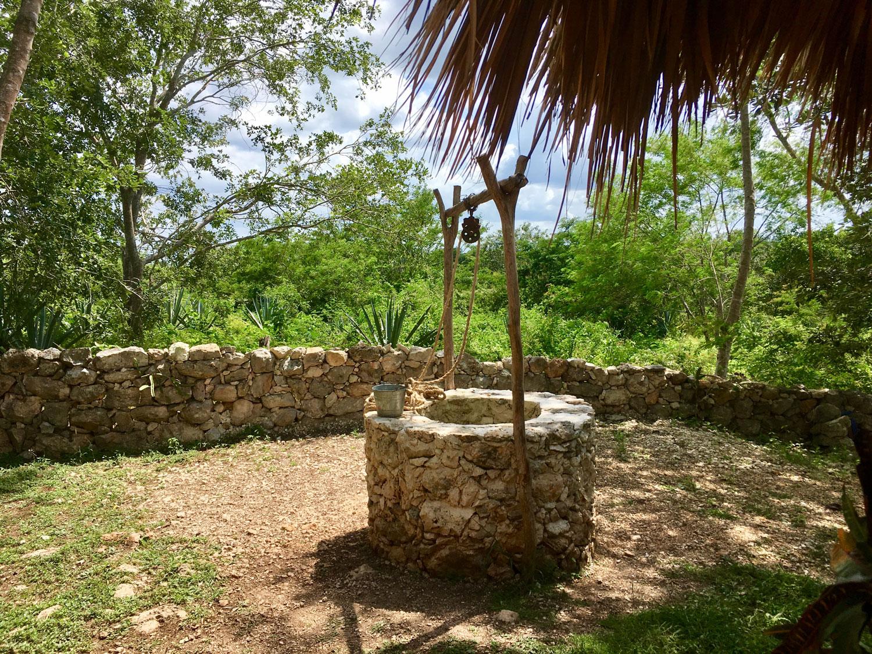 Hammocks_and_Ruins_Blog_Riviera_Maya_Mexico_Travel_Discover_Yucatan_What_to_do_Hacienda_Sotuta_de_Peon_57.jpg
