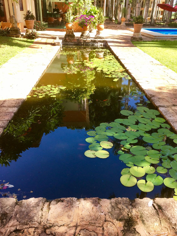 Hammocks_and_Ruins_Riviera_Maya_Mexico_Explore_What_to_Do_Yucatan_Hammocks_Haciendas_Uxmal_18.jpg