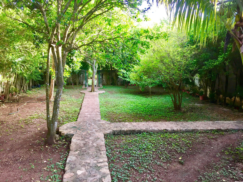 Hammocks_and_Ruins_Riviera_Maya_Mexico_Explore_What_to_Do_Yucatan_Hammocks_Haciendas_Yaxcopoil_10.jpg